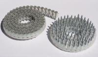 Coil Type Collated Screws