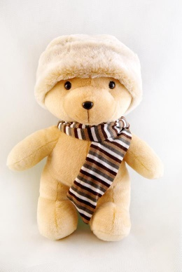 plush toy-bear