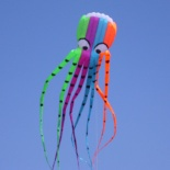 8M octopus kite(no frame soft) - RH028