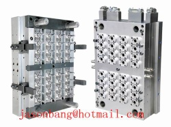 PET  Preform Mould