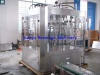 Beer filling machine (beer filler, bottling machine, beer filler monobloc) - Beer filling machine