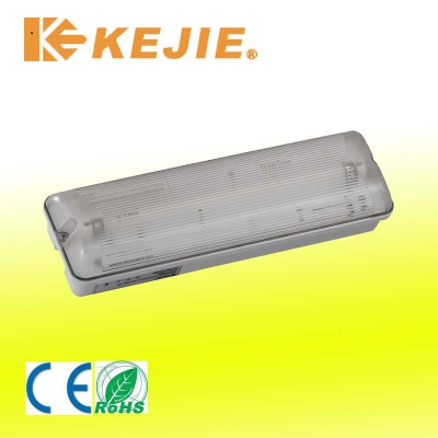 IP65 Emergency light
