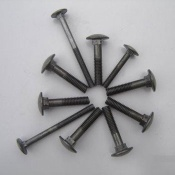 Carriage bolts - 10031