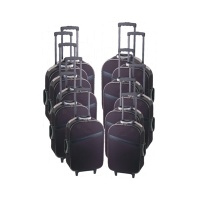 SKD LUGGAGE SET