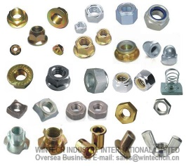 Nuts--Hex Nuts,Lock Nuts,Hex Flange Nuts,Cap Nuts,Weld Nuts - 05
