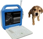 VET Digital Laptop Ultrasound Scanner/portable ultrasound/medical ultrasound/used medical equipment