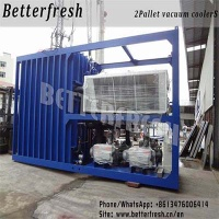 Dongguan Betterfresh refrigeration preservation pre cooling machine vacuum coolers for vegetables keep low temperature - V1