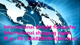China freight forwarder;Shipping booking;Amazon  business;DDU/DDP;Container transport;Air transport&express - shipping booking