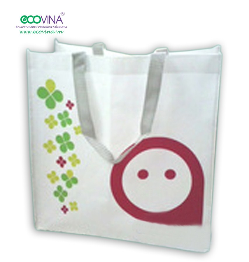 non woven laminated shopping bag