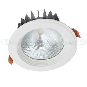 CITIZEN COB 9-54W LED DOWNLIGHT