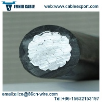 Overhead Insulated Cable - 01