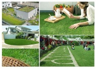 C Shpaed Green Brown Landscape Artificial Grass For Residential Cole 35mm