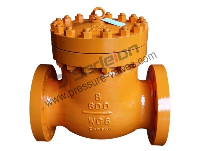 Alloy Check Valves - Alloy Check Valves