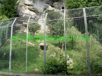 Stainless Steel Welded Mesh Zoo fence - 3