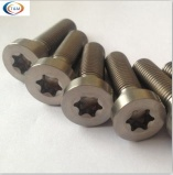 ISO14580 TORX CHEESE HEAD TITANIUM SCREWS - Ti-231
