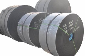 Polyester Conveyor Belt - 004