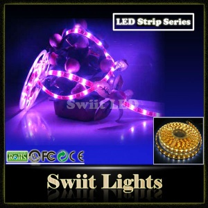 High Lumen SMD5050 LED Strip Light - SW-DD-1005
