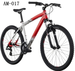 26-Inch Wheels Mountain Bike - AM-017