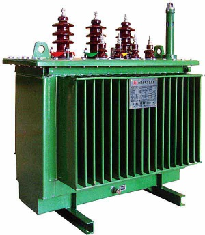 Oil-immersed Distribution Transformer (S13-M-1000kVA)