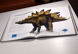 Childrens Pop up Books Printing,Pop up Books Printing,Printing in China - gp20130129001