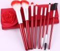 Professional Makeup Brush Set - EYP-DYR008