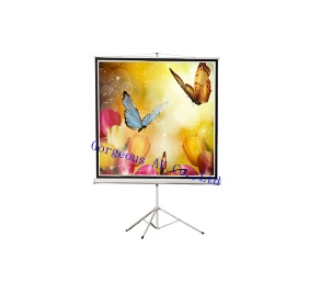Tripod Screen,projection screen for Business Education