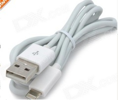 USB Sync Data / Charging Lightning Cable for iPhone 5 - White (100CM)