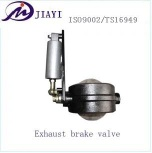 exhausted valve - DZ9100180007