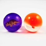 rubber bouncing ball - LT-007