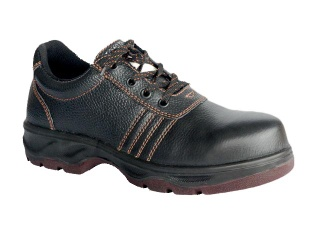 D1002 Safety Shoes, Industrial Safety Footware - D1002