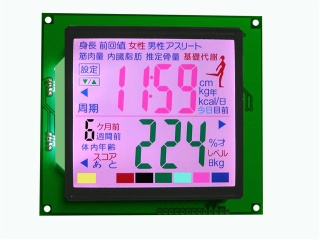 Blackmask LCD Panel - SDM8A4184A