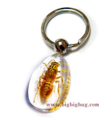 Wasp Key chain