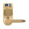 Biometric Lock / Digital Lock - LP903