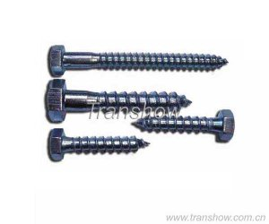Dry Wall Screw - dry wall