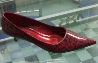 ladies shoe - 001