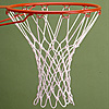 Basketball Net