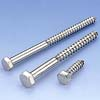 Stainless Steel Wood Screw / DIN571 - A03